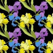 Vektor fialové, modré a žluté kosatce, samostatný na černém pozadí. Barevné květy. Ryté inkoust umění. Vzor bezešvé pozadí. Tiskové textura tapety