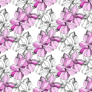 Vector Pink and white orchids. Wildflowers isolated on white. Engraved ink art. Seamless background pattern. Wallpaper print texture. clip art vector