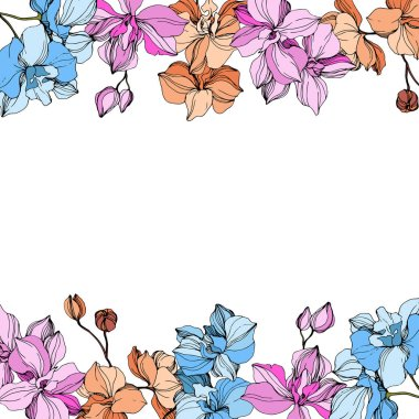 Vector pink, orange and blue orchids. Wildflowers isolated on white. Engraved ink art. Floral frame border clip art vector