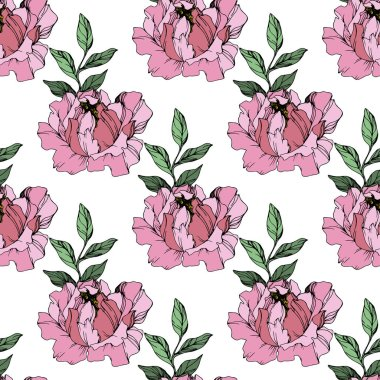 Vector Pink peonies. Wildflowers isolated on white. Engraved ink art. Seamless background pattern. Wallpaper print texture. clip art vector