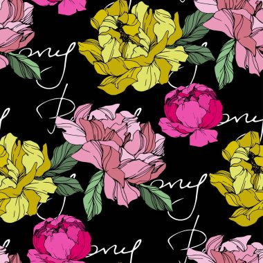 Vector Pink and yellow peonies. Wildflowers isolated on black. Engraved ink art. Seamless background pattern. Wallpaper print texture with 'peony' lettering clip art vector