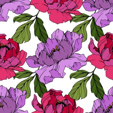 Vector Pink and purple peonies. Wildflowers isolated on white. Engraved ink art. Seamless background pattern. Wallpaper print texture. clip art vector