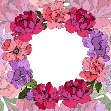 Vector Pink and purple peonies. Wildflowers isolated on white. Engraved ink art. Floral frame border clip art vector