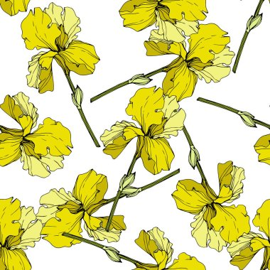 Vector yellow Irises. Colorful wildflowers isolated on white. Engraved ink art. Seamless background pattern. Wallpaper print texture. clip art vector