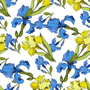 Vector yellow and blue Irises. Colorful wildflowers isolated on white. Engraved ink art. Seamless background pattern. Wallpaper print texture. clip art vector