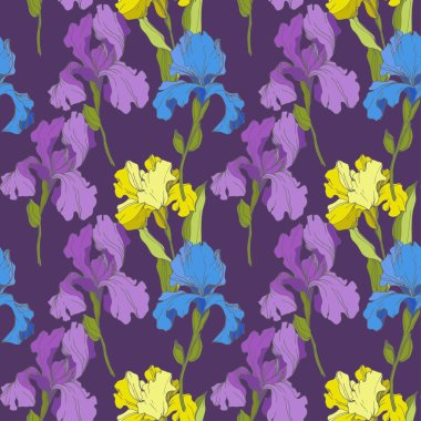 Vector Irises on purple background. Colorful wildflowers. Engraved ink art. Seamless background pattern. Wallpaper print texture clip art vector