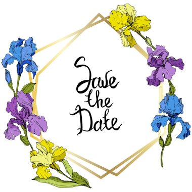 Vector Purple, yellow and blue irises. Colorful wildflowers isolated on white. Engraved ink art. Frame border with 'save the date' lettering clip art vector