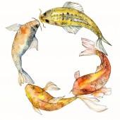 Sada akvarel vodní podvodní barevné tropické ryby. Rudé moře a exotické ryby uvnitř: zlaté rybky. Aquarelle prvky pro pozadí, textura, wrapper vzorem. Frame hranice ozdoba náměstí