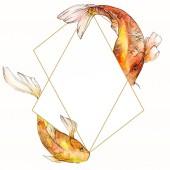Akvarell vízi víz alatti színes trópusi hal meg. Vörös-tenger és egzotikus halak belül: Aranyhal. Az Aquarelle elemek háttér, a textúra, a burkoló minta. Test határ Dísz tér