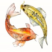 Fotografie Watercolor aquatic underwater colorful tropical fish set. Red sea and exotic fishes inside: Goldfish. Aquarelle elements for background, texture. Isolated goldenfish illustration element.