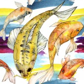 Watercolor aquatic underwater colorful tropical fish set. Red sea and exotic fishes inside: Golden fish. Aquarelle elements for background, texture, wrapper pattern.