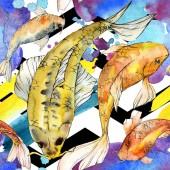Fotografie Sada akvarel vodní podvodní barevné tropické ryby. Rudé moře a exotické ryby uvnitř: zlatá rybka. Aquarelle prvky pro pozadí, textura, wrapper vzorem