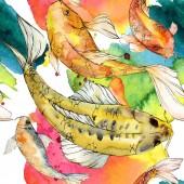 Akvarell vízi víz alatti színes trópusi hal meg. Vörös-tenger és egzotikus halak belül: arany halat. A háttér, a textúra, a burkoló minta Aquarelle elemek.