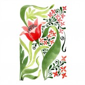 Piros virág botanikai virág. Vad tavaszi levél vadvirág elszigetelt. Akvarell háttér illusztráció készlet. Akvarell rajz divat aquarelle elszigetelt. Elszigetelt dísz ábra elem
