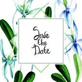 Kék ritka orchidea. Virágos botanikai virág. Vad tavaszi levél vadvirág elszigetelt. Akvarell háttér illusztráció készlet. Akvarell rajz divat aquarelle elszigetelt. Test határ Dísz tér.