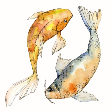 Watercolor aquatic underwater colorful tropical fish set. Red sea and exotic fishes inside: Goldfish. Aquarelle elements for background, texture. Isolated goldenfish illustration element.