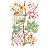 Fényképek Sárga és piros virágos botanikai dísz. Akvarell háttér illusztráció készlet. Elszigetelt dísz ábra elem