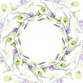 Sada olivy akvarel pozadí obrázku. Frame hranice ornament se kopie prostoru.