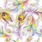 Fotografie Barevné ptačí pírko z křídla, samostatný. Sada akvarel pozadí obrázku. Akvarel, samostatný výkresu módní aquarelle. Vzor bezešvé pozadí. Fabric tapety tisku textura