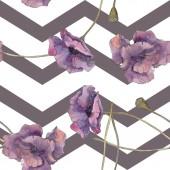 Červené a fialové máku květinové botanické květin. Divoký jarní listové izolované. Sada akvarel ilustrace. Akvarel výkresu aquarelle. Vzor bezešvé pozadí. Fabric tapety tisku textura.