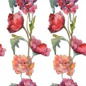 Červeného máku květinové botanické květin. Divoký jarní list. Sada akvarel ilustrace. Akvarel, samostatný výkresu módní aquarelle. Vzor bezešvé pozadí. Fabric tapety tisku textura