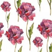 Piros pipacs floral botanikus virág. Vad tavaszi levél. Akvarell illusztráció készlet. Akvarell rajz divat aquarelle elszigetelt. Varratmentes háttérben minta. Anyagot a nyomtatási textúrát.