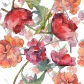 Fotografie Červeného máku květinové botanické květin. Divoký jarní list. Sada akvarel ilustrace. Akvarel, samostatný výkresu módní aquarelle. Vzor bezešvé pozadí. Fabric tapety tisku textura.