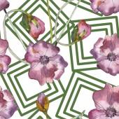 Fényképek Lila piros virágos botanikai mákgubóból. Vad tavaszi levél elszigetelt. Akvarell illusztráció készlet. Akvarell rajz divat aquarelle. Varratmentes háttérben minta. Anyagot a nyomtatási textúrát.