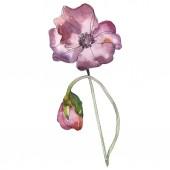 Fényképek Lila piros virágos botanikai mákgubóból. Vad tavaszi levél elszigetelt. Akvarell háttér illusztráció készlet. Akvarell rajz divat aquarelle elszigetelt. Elszigetelt Pipacsok ábra elem