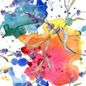 Fialové levandule. Sada akvarel ilustrace. Vzor bezešvé pozadí. Fabric tapety tisku textura.