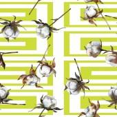 Bavlny květinové botanické květin. Sada akvarel pozadí obrázku. Akvarel, samostatný výkresu módní aquarelle. Vzor bezešvé pozadí. Fabric tapety tisku textura.