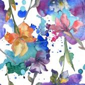 Fotografie Fialové, červené, oranžové a modré kosatce květinové botanické květin. Sada akvarel zázemí. Akvarel výkresu módní aquarelle. Vzor bezešvé pozadí. Fabric tapety tisku textura