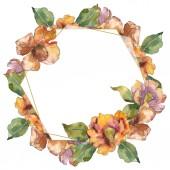 Fotografie Izolované oranžové camellia květy zelené květy. Sada akvarel ilustrace. Frame hranice ornament se kopie prostoru.