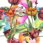 Vínové a červené vlčí máky s listy. Sada akvarel ilustrace. Frame hranice ornament.