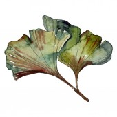 Green ginkgo biloba isolated leaves. Watercolor background illustration set.