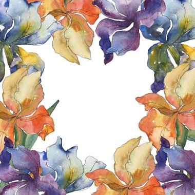 Purple, red, orange and blue irises floral botanical flower. Wild spring leaf wildflower. Watercolor background set. Watercolour drawing fashion aquarelle isolated. Frame border ornament square. stock vector