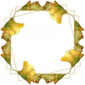 Green and yellow ginkgo biloba foliage watercolor illustration set.  Frame border ornament with copy space.