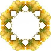 Sada zelená ginkgo biloba listoví akvarel ilustrace. Frame hranice ornament se kopie prostoru.