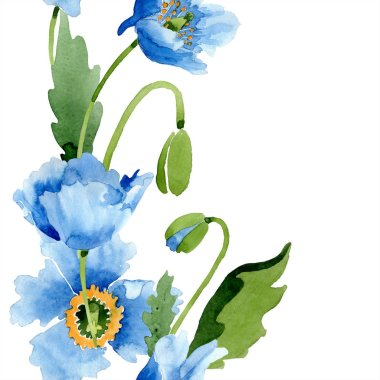 Blue poppies with leaves and buds isolated on white. Watercolor illustration set. stock vector