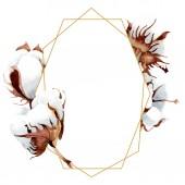 Bavlny květinové botanické květin. Divoký jarní listové wildflower izolován. Sada akvarel pozadí obrázku. Akvarel, samostatný výkresu módní aquarelle. Frame hranice ozdoba náměstí