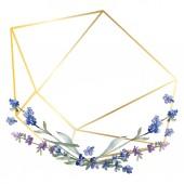 Fialové levandule. Květinové botanické květin. Divoký jarní listové wildflower izolován. Sada akvarel pozadí obrázku. Akvarel, samostatný výkresu módní aquarelle. Frame hranice ozdoba náměstí