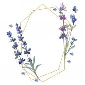 violettem Lavendel. Blütenbotanische Blume. wildes Frühlingsblatt Wildblume isoliert. Aquarell Hintergrundillustration Set. Aquarellzeichnung Modeaquarell isoliert. Rahmen Rand Ornament Quadrat.