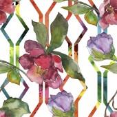 Fotografie Květiny kamélie červená a fialová. Sada akvarel ilustrace. Vzor bezešvé pozadí. Fabric tapety tisku textura.
