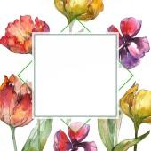 Žluté a červené tulipány akvarel pozadí obrázku sada. Frame hranice ornament se kopie prostoru
