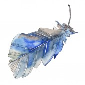 Fotografie Ptačí pírko z křídla, samostatný. Sada akvarel pozadí obrázku. Akvarel, samostatný výkresu módní aquarelle. Izolované prolnutí okrajů obrázku prvek