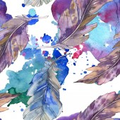 Fotografie Bird feather from wing isolated. Watercolor background illustration set. Watercolour drawing fashion aquarelle isolated. Seamless background pattern. Fabric wallpaper print texture.