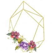 Fotografie Květiny kamélie červená a fialová. Sada akvarel pozadí obrázku. Frame hranice ornament se kopie prostoru