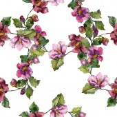 Červená fialová camelia botanické květin. Divoký jarní listové izolované. Sada akvarel ilustrace. Akvarel výkresu módní aquarelle. Vzor bezešvé pozadí. Fabric tapety tisku textura