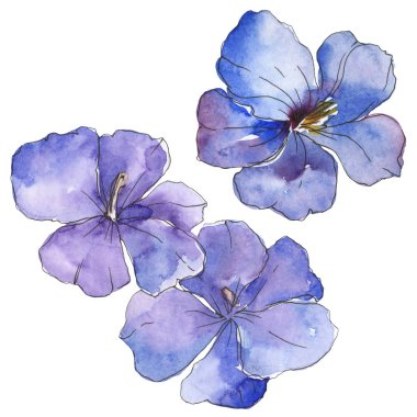 Blue purple flax. Floral botanical flower. Wild spring leaf wildflower isolated. Watercolor background illustration set. Watercolour drawing fashion aquarelle. Isolated flax illustration element.