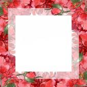 Červené pivoňky sada akvarel zázemí ilustrace izolované na bílém. Frame hranice ornament